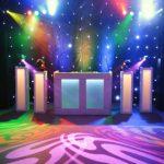 DJ show op wedding